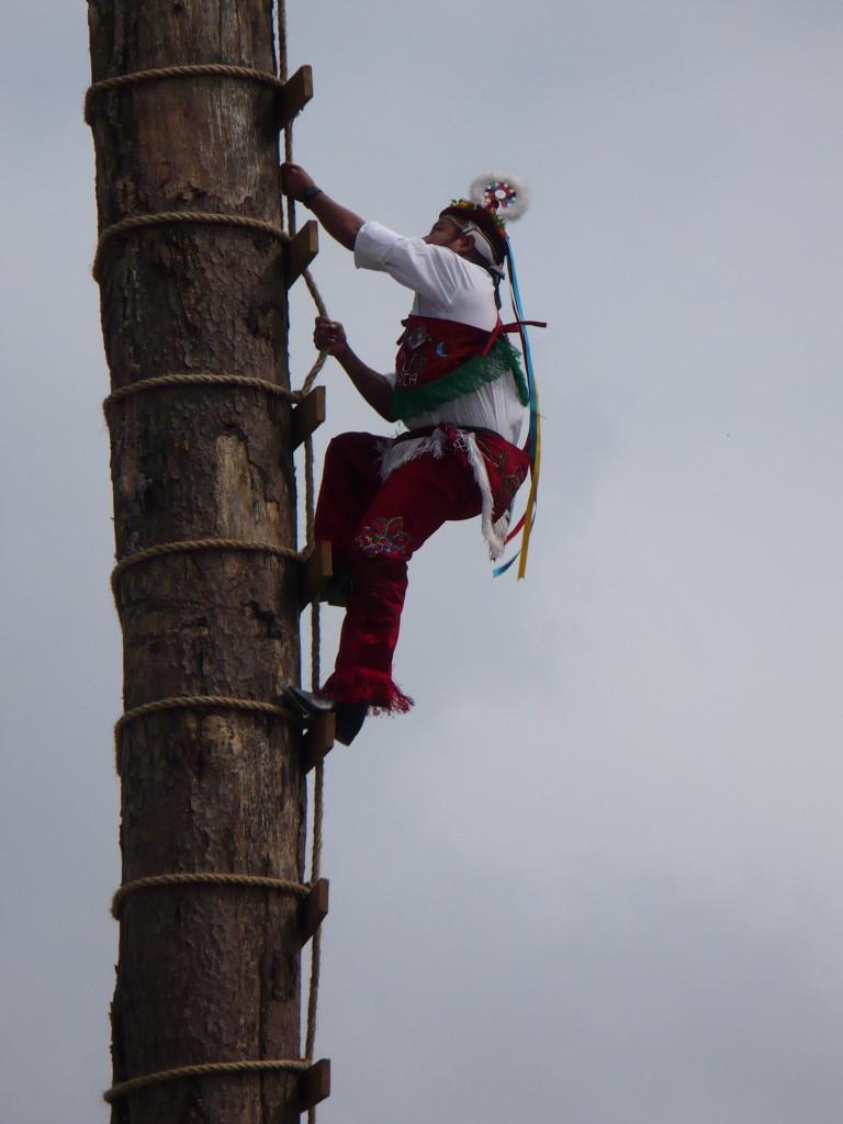 A Volador climbing the pole.